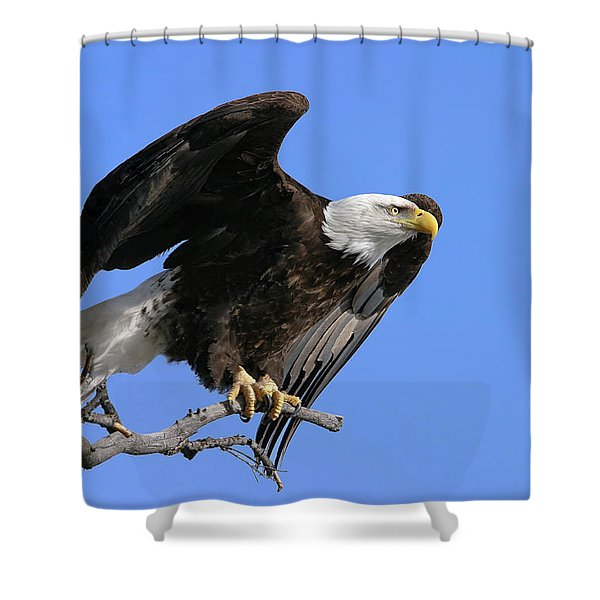 Symbol Of Freedom Shower Curtain