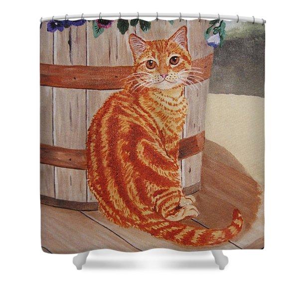 Tabby Cat Shower Curtain