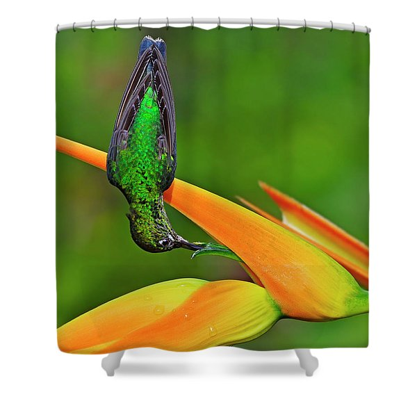 Table Manners Shower Curtain