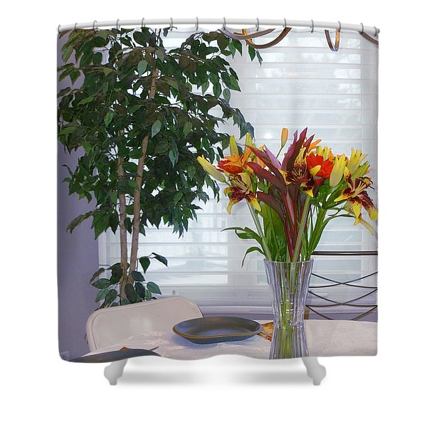 Tabletop Shower Curtain