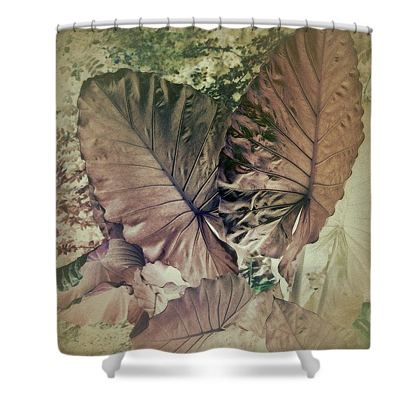 Shower Curtain featuring the digital art Tai Giant Abstract by Robert G Kernodle