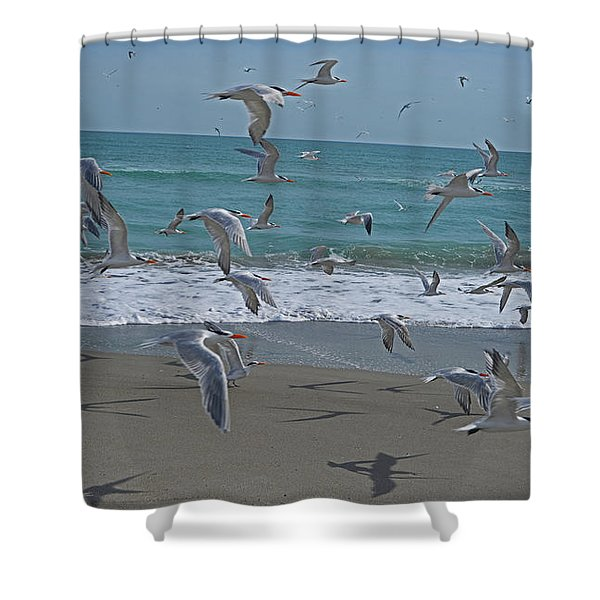Take Flight Shower Curtain