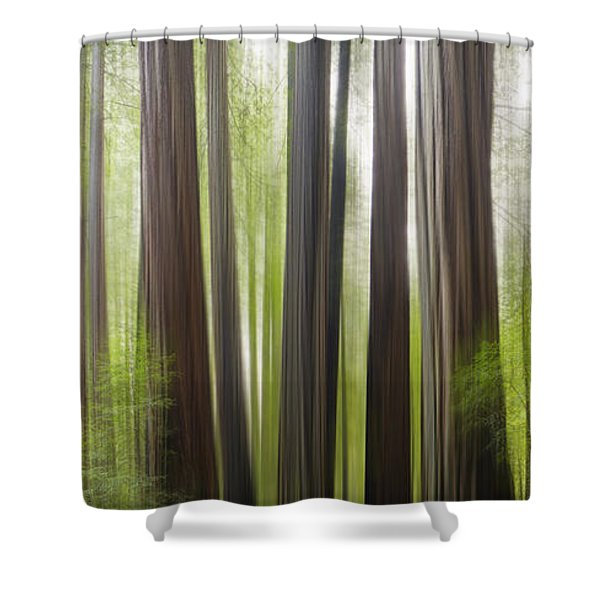 Take Me To The Forest Shower Curtain