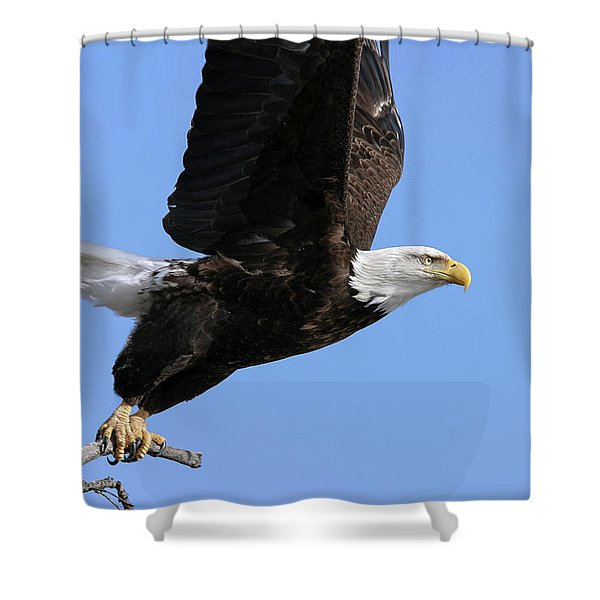 Shower Curtain featuring the photograph Take Off by Ronnie and Frances Howard
