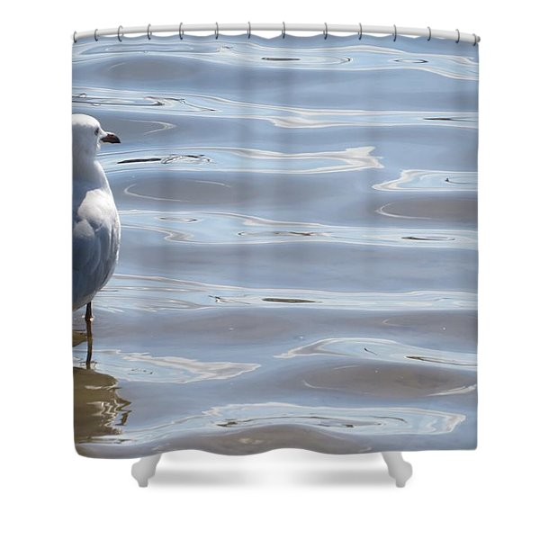 Taking A Dip Shower Curtain