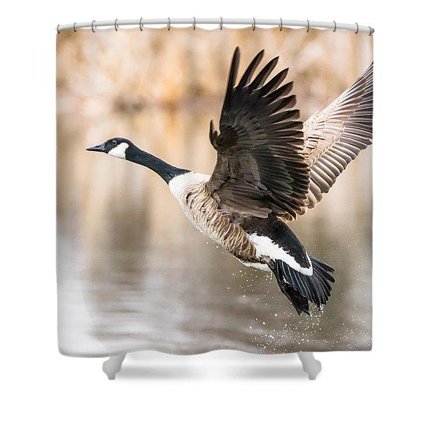 Taking Flight Shower Curtain
