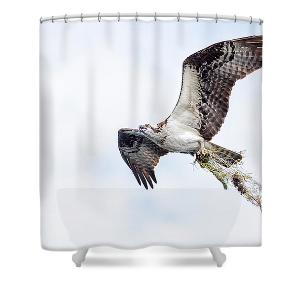 Taking It Home Shower Curtain