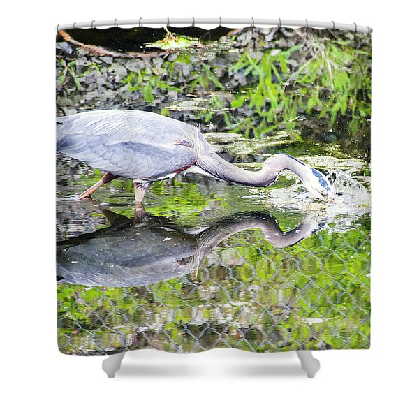 Taking The Plunge Shower Curtain
