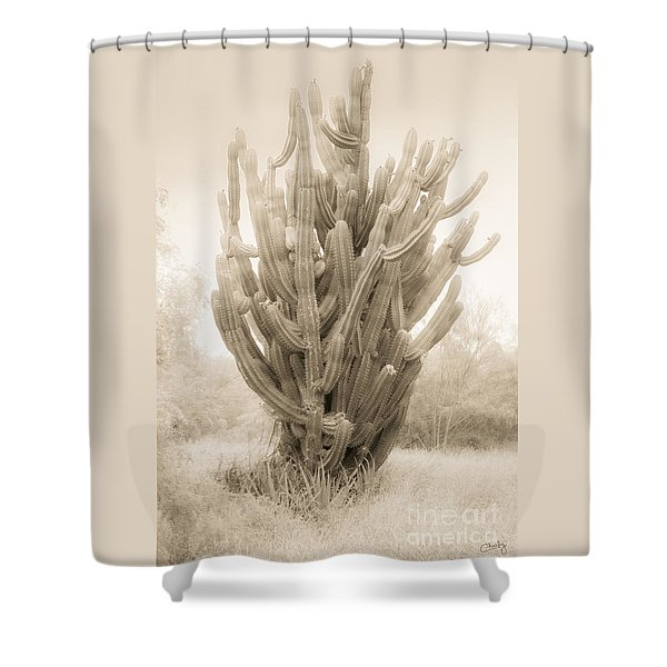 Tall Cactus In Sepia Shower Curtain