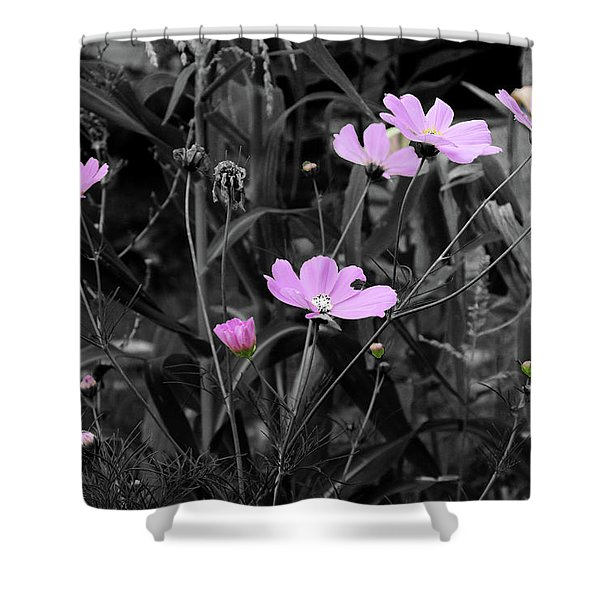 Tall Pink Poppies Shower Curtain