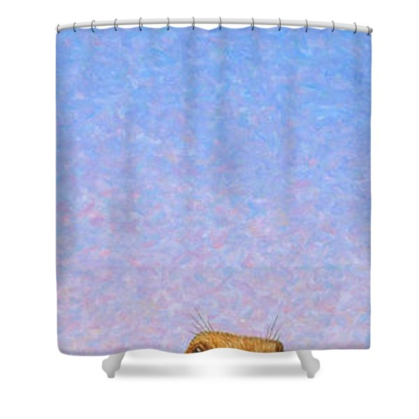 Tall Prairie Dog Shower Curtain