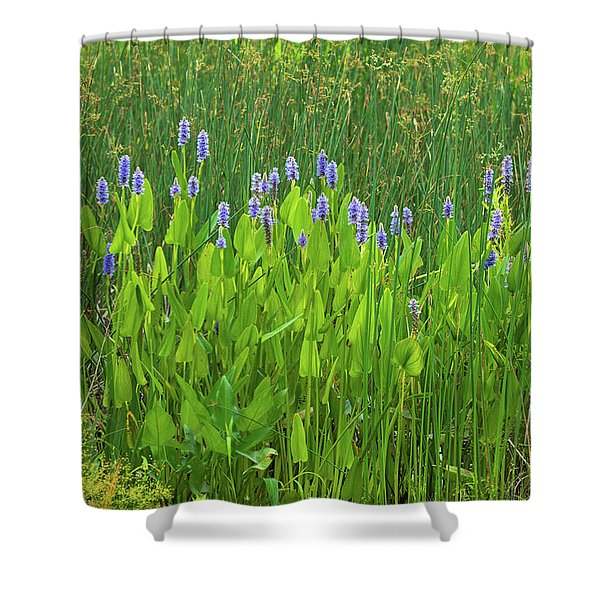Tall Purple And Blue Blooming Flowers Shower Curtain