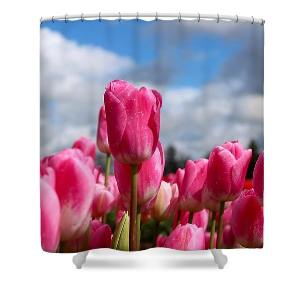Tall Standing Tulip Shower Curtain