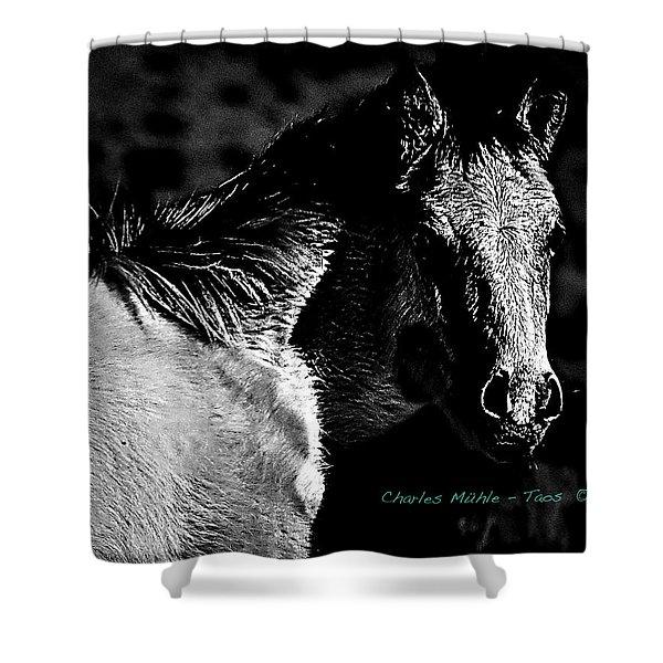Taos Pony In B-w Shower Curtain