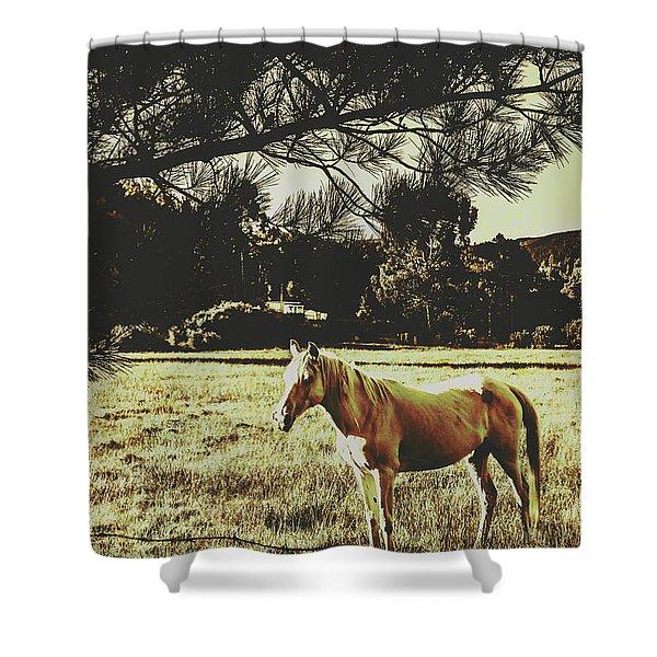 Tasmanian Rural Farm Horse Shower Curtain
