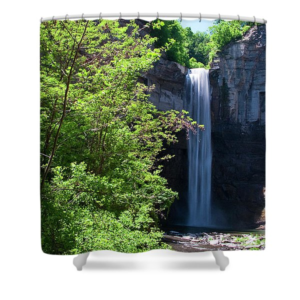 Taughannock Falls 0466 Shower Curtain