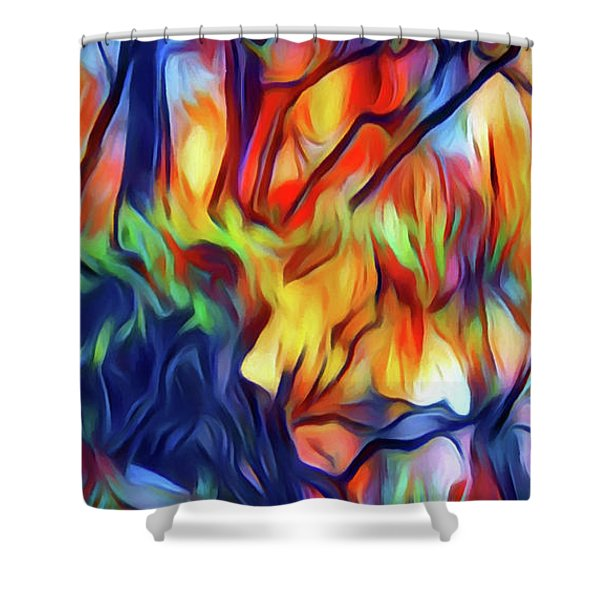 Taylors Creek Shower Curtain