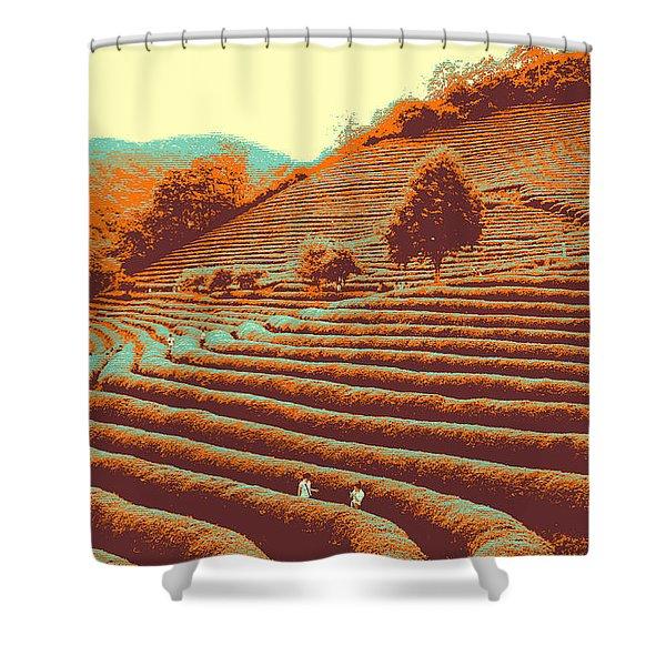 Tea Field Shower Curtain