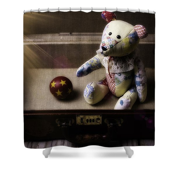 Teddy Bear In Suitcase Shower Curtain
