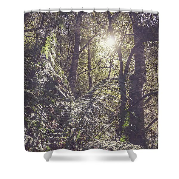 Temperate Rainforest Canopy Shower Curtain