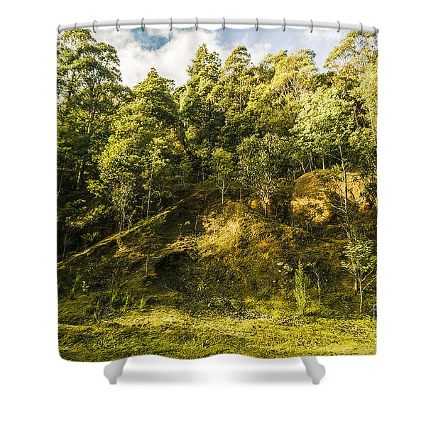 Temperate Rainforest Scene Shower Curtain