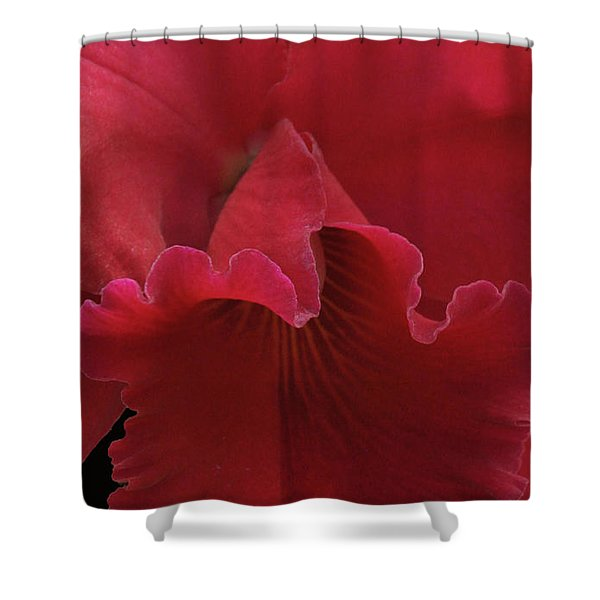 Tender Orchid Shower Curtain