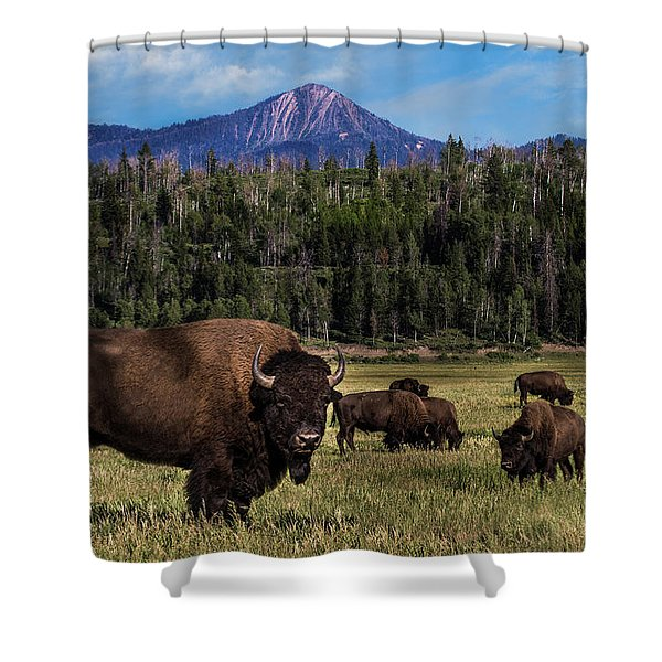 Tending The Herd Shower Curtain