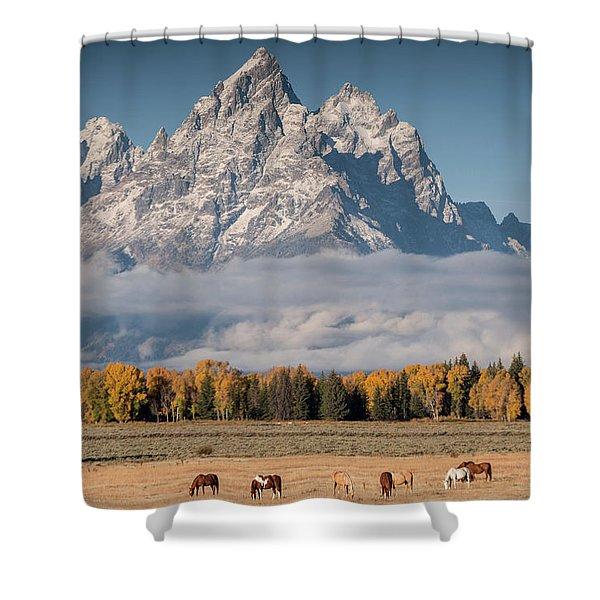 Teton Horses Shower Curtain