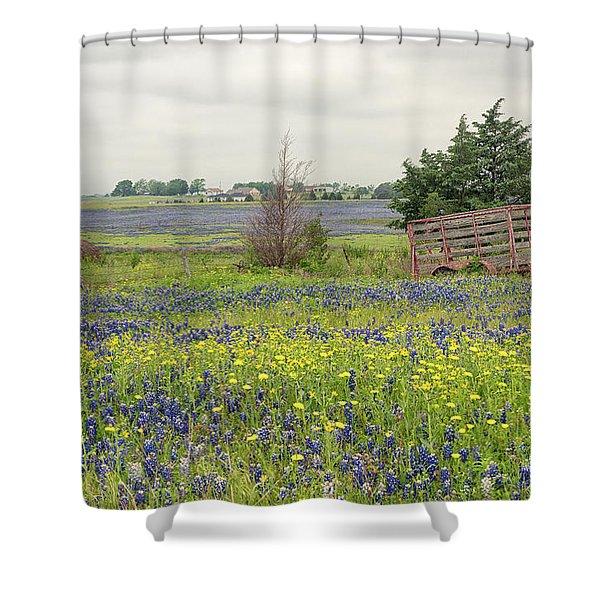 Texas Bluebonnets 3 Shower Curtain