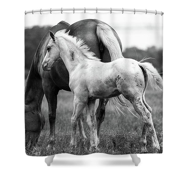 Texas Ranch  Shower Curtain