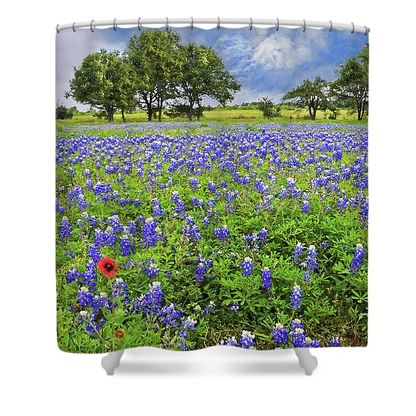 Texas Spring  Shower Curtain