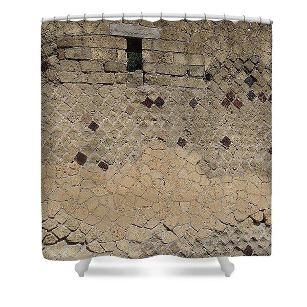 Textural Antiquities Herculaneum Wall One Shower Curtain