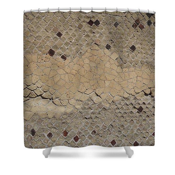 Textural Antiquities Herculaneum Wall Two Shower Curtain