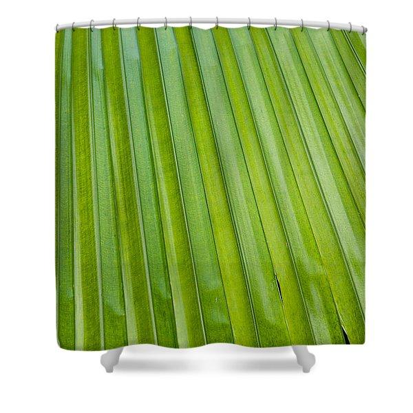 Texture 330 Shower Curtain