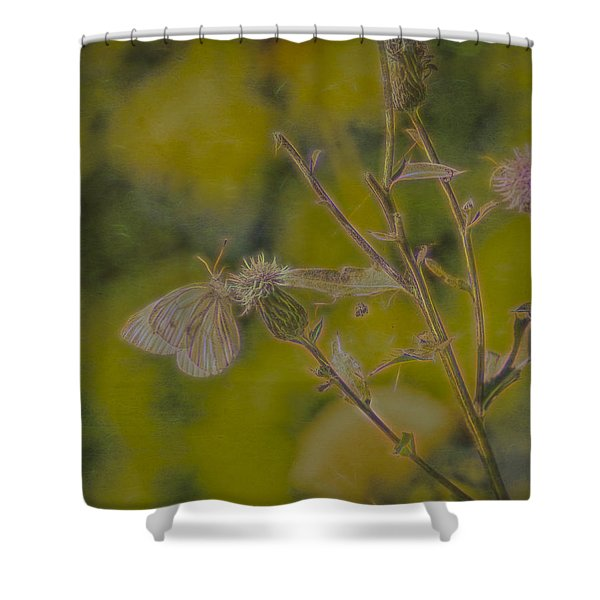Textured Butterfly 1   Shower Curtain