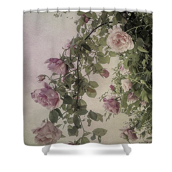 Textured Roses Shower Curtain