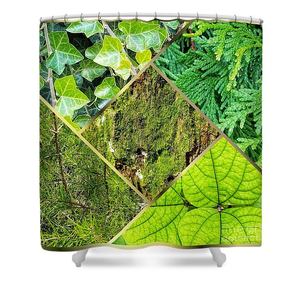 Textures In Shades Of Green Shower Curtain
