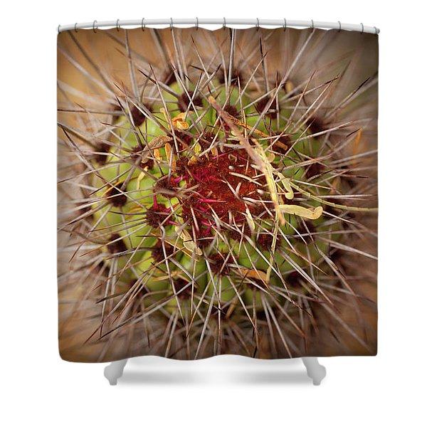 Textures Of Arizona Shower Curtain