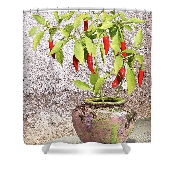 Thai Chili Plant In Pot Shower Curtain