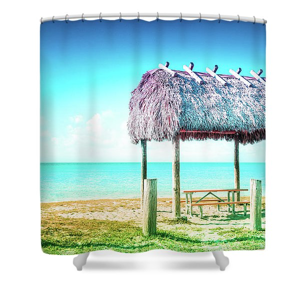 Thatched Roof Hut On Beach Shower Curtain