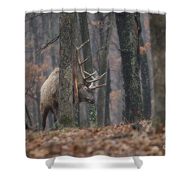 That's The Spot Shower Curtain