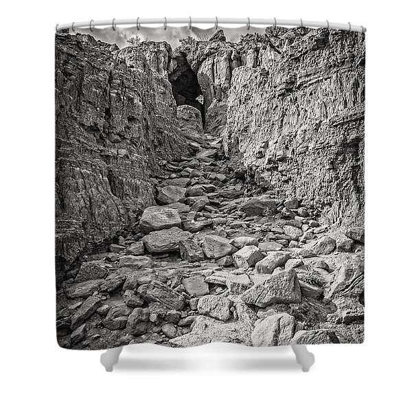 The 23rd Psalm Shower Curtain
