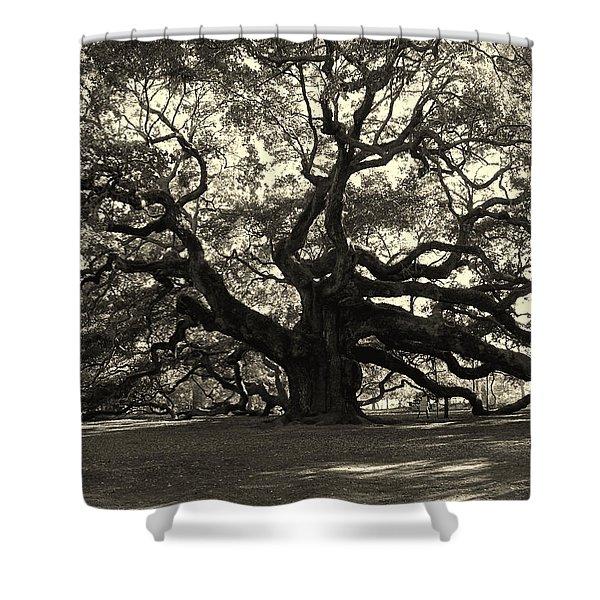 The Angel Oak Shower Curtain