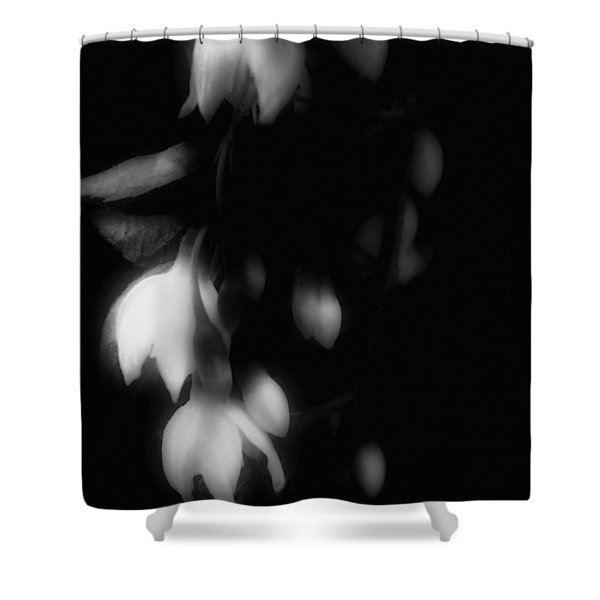 The Art Of Seduction Shower Curtain