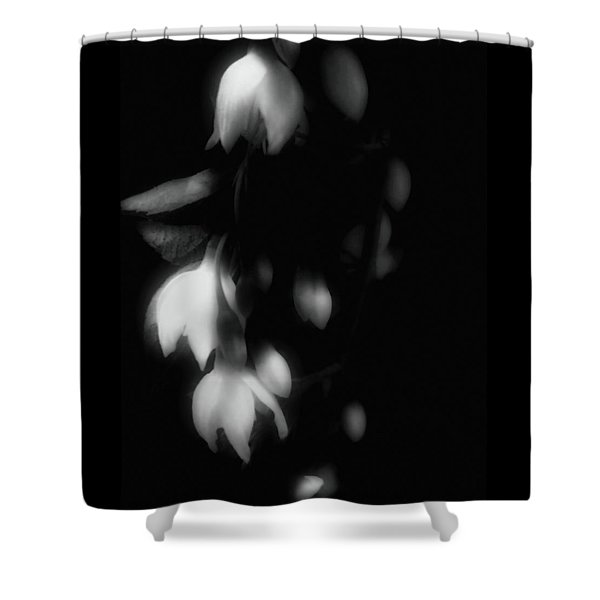 The Art Of Seduction Shower Curtain