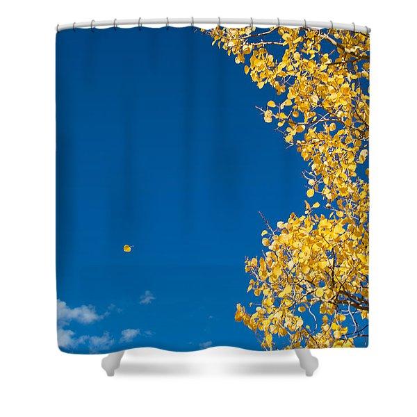 The Aspen Leaf Shower Curtain