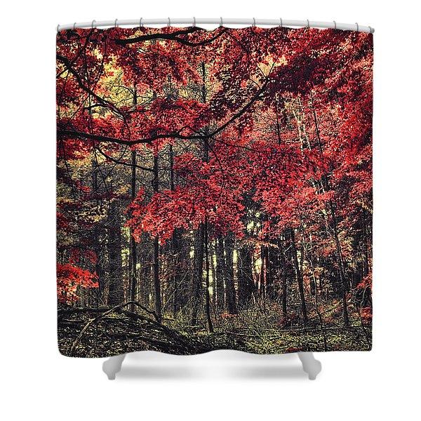 The Autumn Colors Shower Curtain