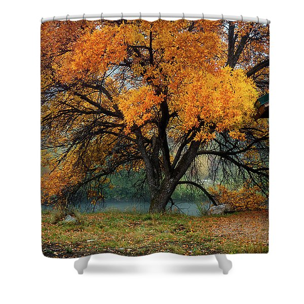 The Autumn Tree Shower Curtain