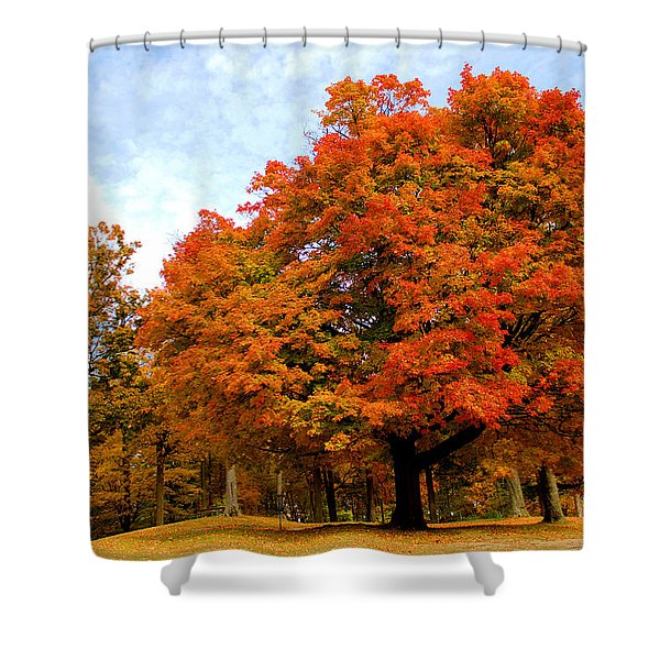 The Beauty Of Autumn  Shower Curtain