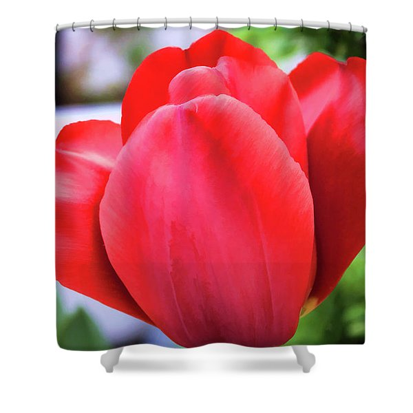The Tulip Beauty Shower Curtain